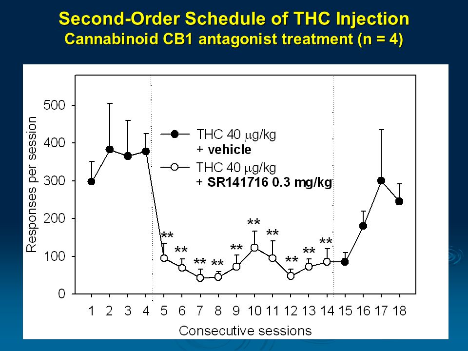 Second-Order Schedule of THC Injection Cannabinoid CB1 antagonist treatment (n = 4)