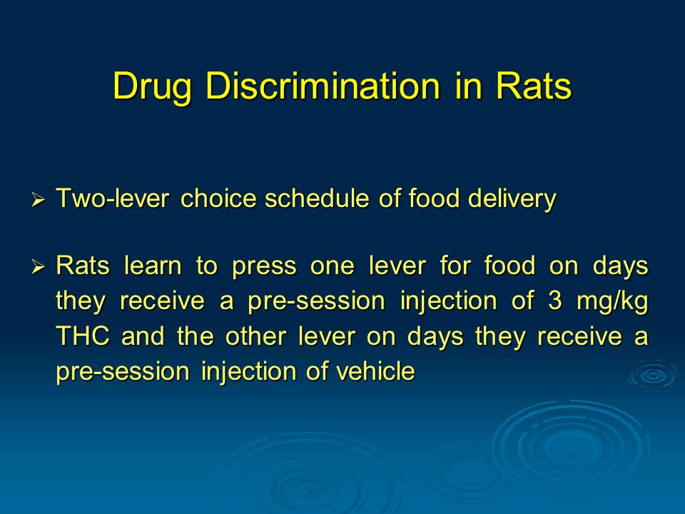 Drug Discrimination in Rats  Two-lever choice schedule of food delivery  Rats learn to press one lever for food on days they receive a pre-session injection of 3 mg/kg THC and the other lever on days they receive a pre-session injection of vehicle
