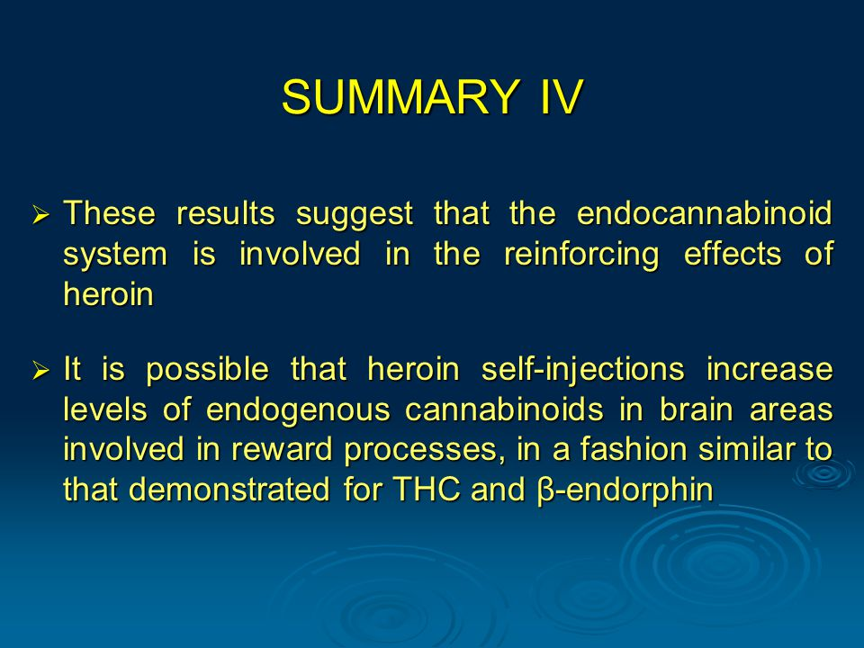 SUMMARY IV  These results suggest that the endocannabinoid system is involved in the reinforcing effects of heroin  It is possible that heroin self-injections increase levels of endogenous cannabinoids in brain areas involved in reward processes, in a fashion similar to that demonstrated for THC and β-endorphin