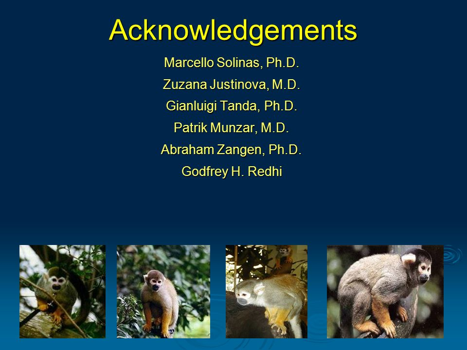 Acknowledgements Marcello Solinas, Ph.D. Zuzana Justinova, M.D.