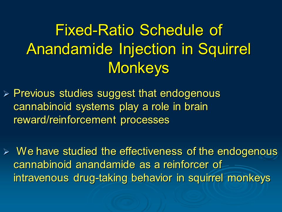 Fixed-Ratio Schedule of Anandamide Injection in Squirrel Monkeys  Previous studies suggest that endogenous cannabinoid systems play a role in brain reward/reinforcement processes  We have studied the effectiveness of the endogenous cannabinoid anandamide as a reinforcer of intravenous drug-taking behavior in squirrel monkeys