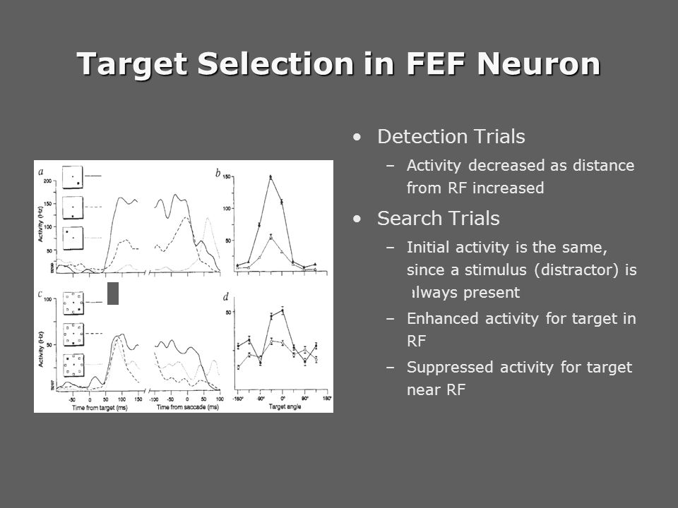 Target Selection in FEF Neuron Detection Trials –Activity decreased as distance from RF increased Search Trials –Initial activity is the same, since a stimulus (distractor) is always present –Enhanced activity for target in RF –Suppressed activity for target near RF