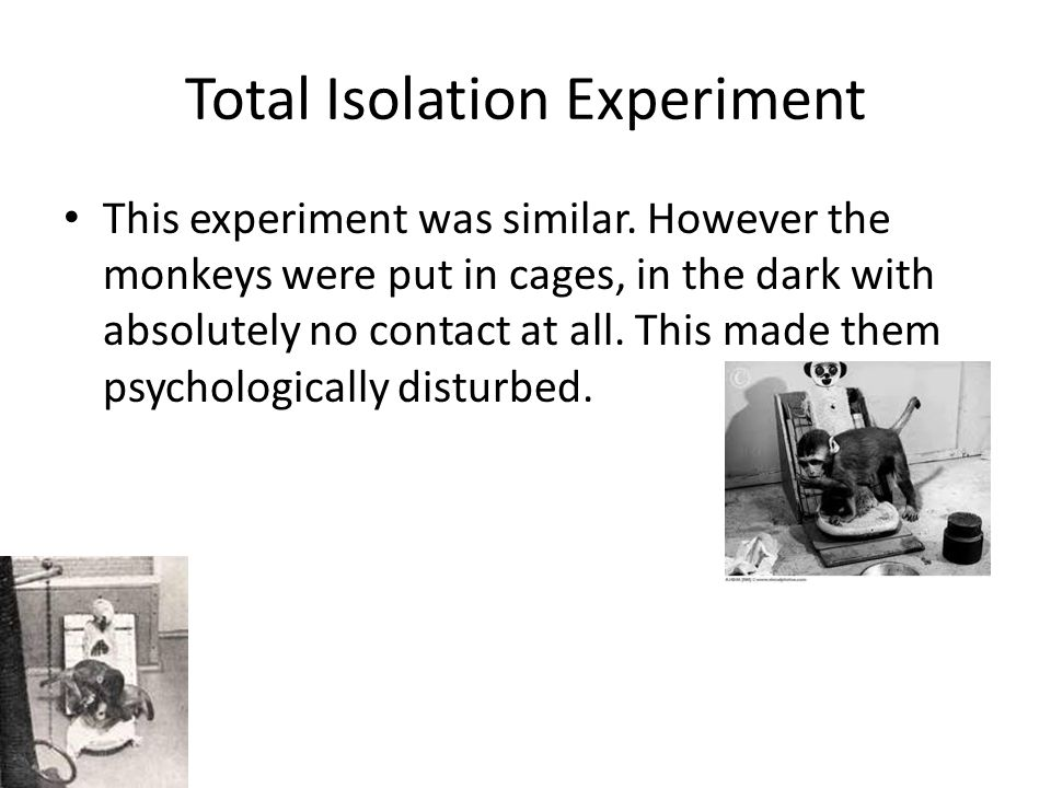 Total Isolation Experiment This experiment was similar.