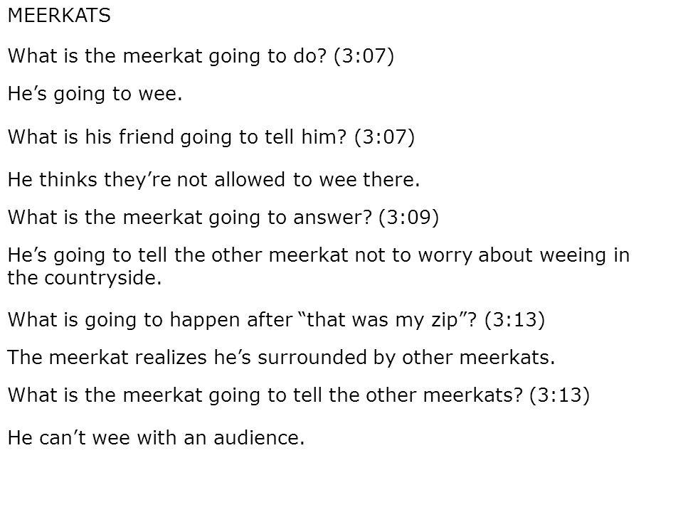 MEERKATS What is the meerkat going to do. (3:07) He's going to wee.