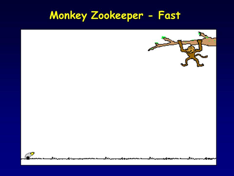 Monkey – Zookeeper – No Gravity