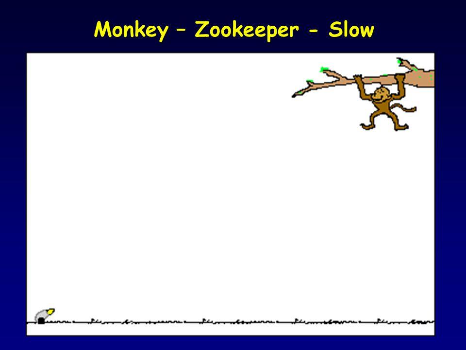 Monkey Zookeeper - Fast