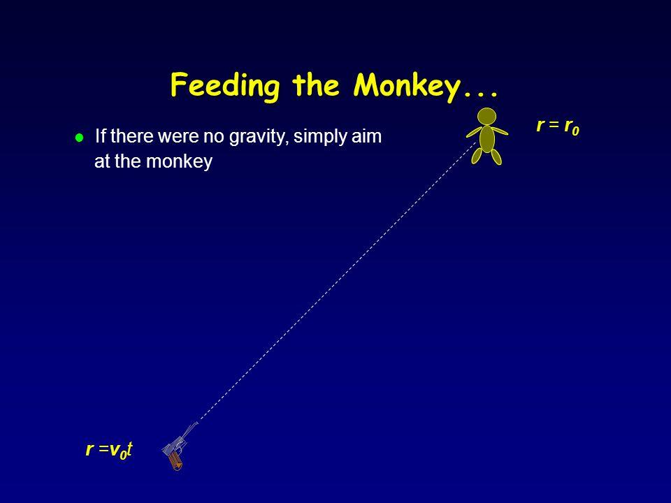 Feeding the Monkey (Banana Gun) l Where does the zookeeper aim if he wants to hit the monkey.