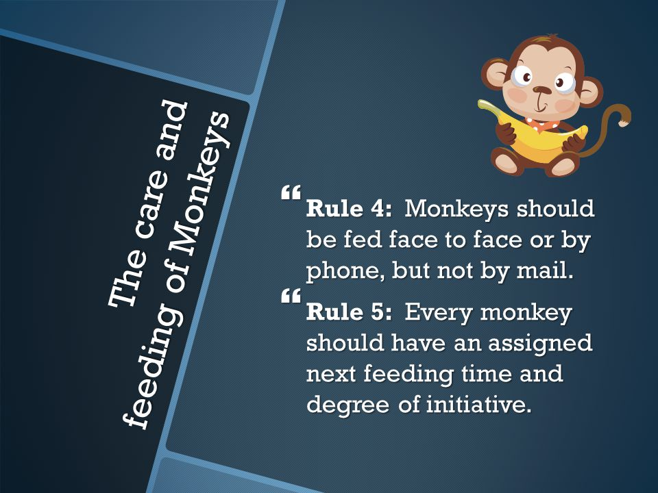 The care and feeding of Monkeys  Rule 4: Monkeys should be fed face to face or by phone, but not by mail.