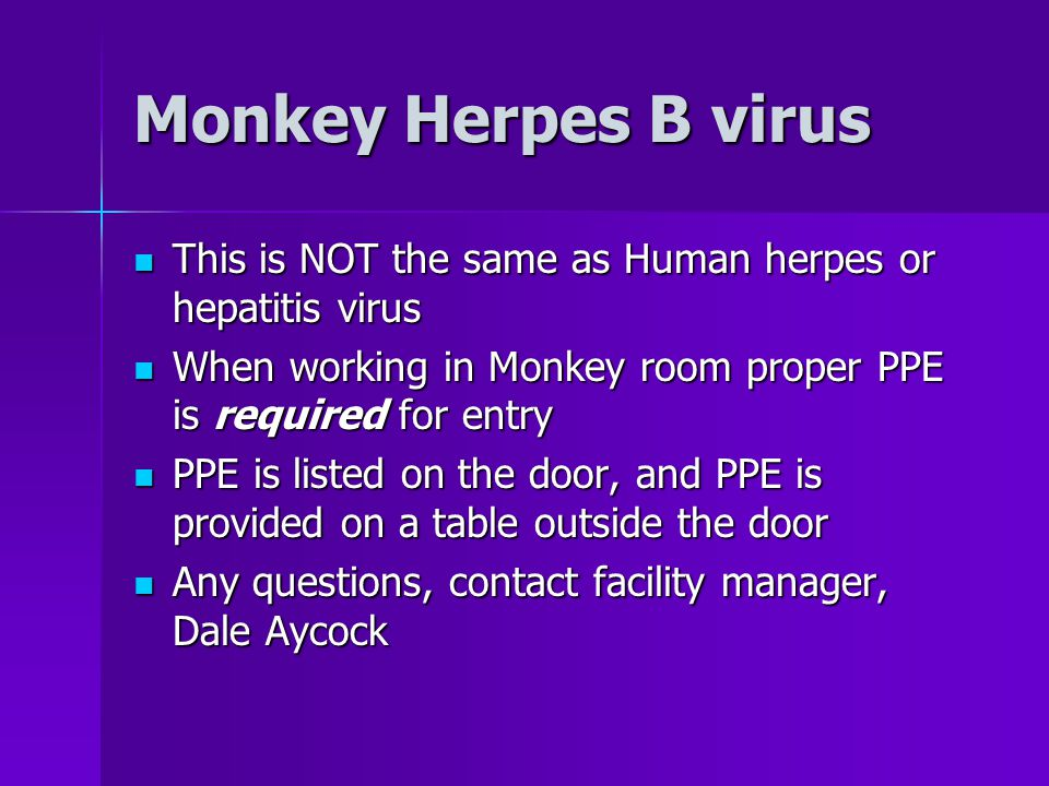Monkey Herpes B virus This is NOT the same as Human herpes or hepatitis virus This is NOT the same as Human herpes or hepatitis virus When working in Monkey room proper PPE is required for entry When working in Monkey room proper PPE is required for entry PPE is listed on the door, and PPE is provided on a table outside the door PPE is listed on the door, and PPE is provided on a table outside the door Any questions, contact facility manager, Dale Aycock Any questions, contact facility manager, Dale Aycock