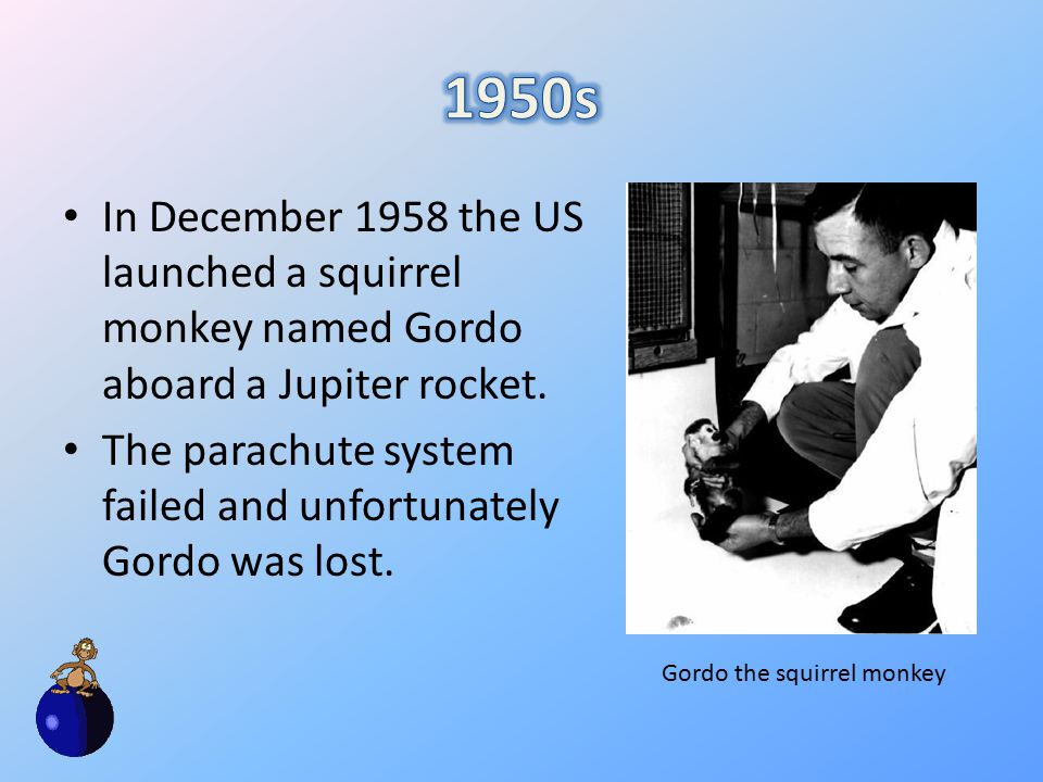 In December 1958 the US launched a squirrel monkey named Gordo aboard a Jupiter rocket.