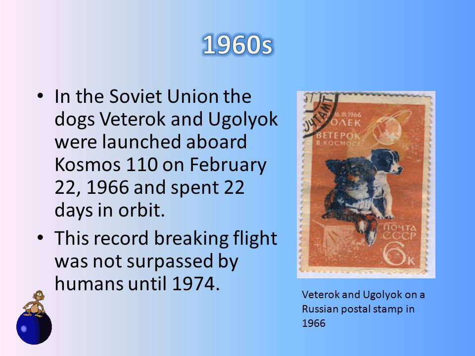 In the Soviet Union the dogs Veterok and Ugolyok were launched aboard Kosmos 110 on February 22, 1966 and spent 22 days in orbit.