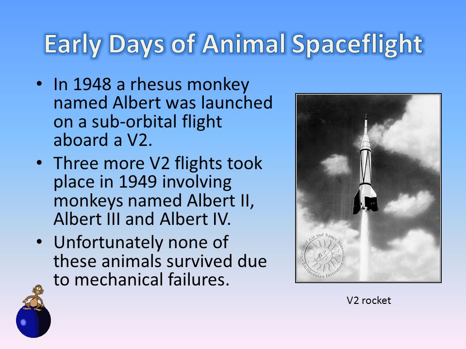 In 1948 a rhesus monkey named Albert was launched on a sub-orbital flight aboard a V2.