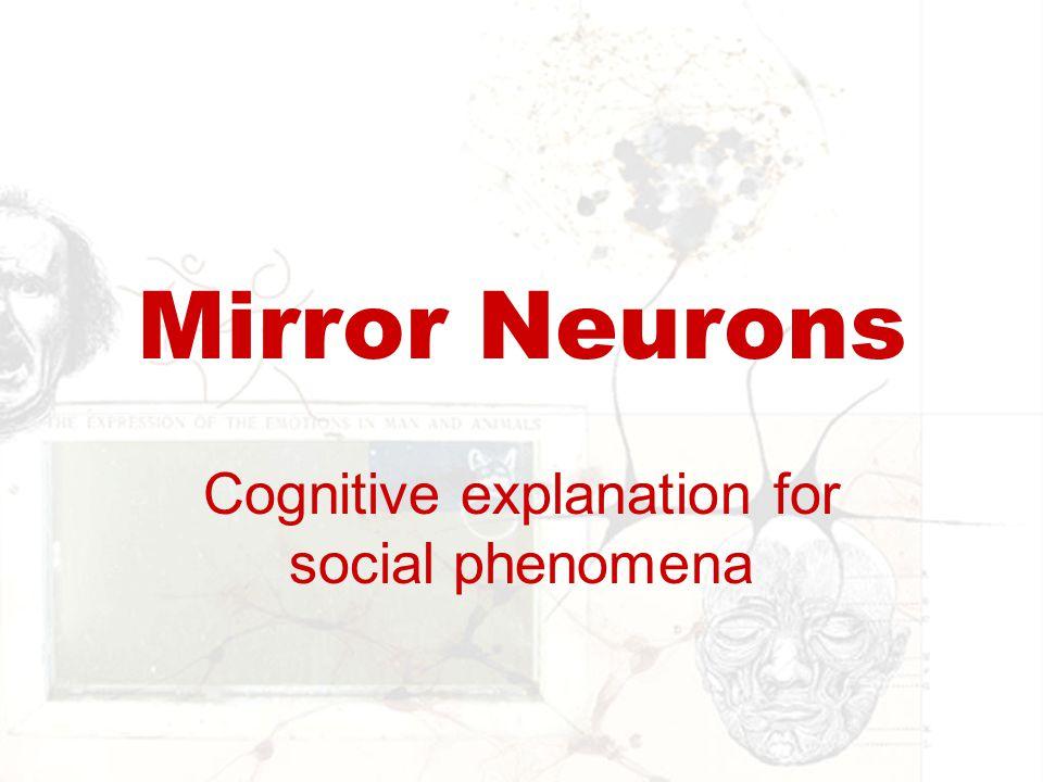Mirror Neurons Cognitive explanation for social phenomena