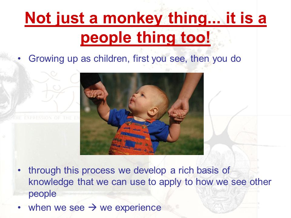 Not just a monkey thing... it is a people thing too! Growing up as children, first you see, then you do through this process we develop a rich basis o