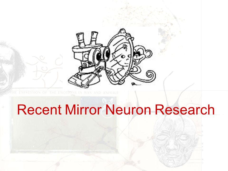 Recent Mirror Neuron Research