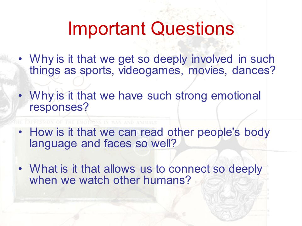 Important Questions Why is it that we get so deeply involved in such things as sports, videogames, movies, dances? Why is it that we have such strong
