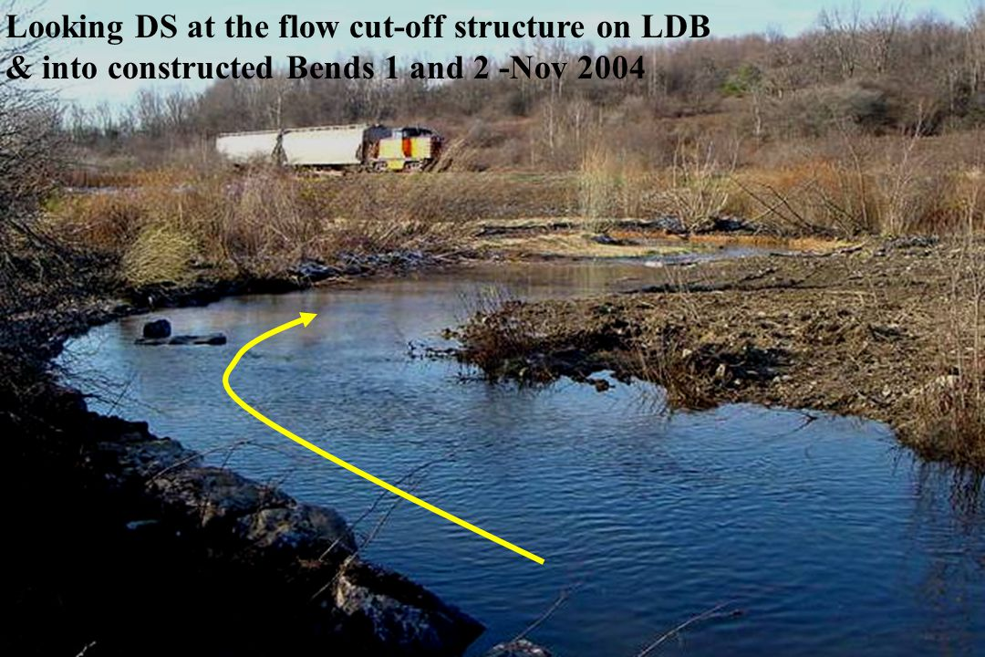 Looking DS at the flow cut-off structure on LDB & into constructed Bends 1 and 2 -Nov 2004