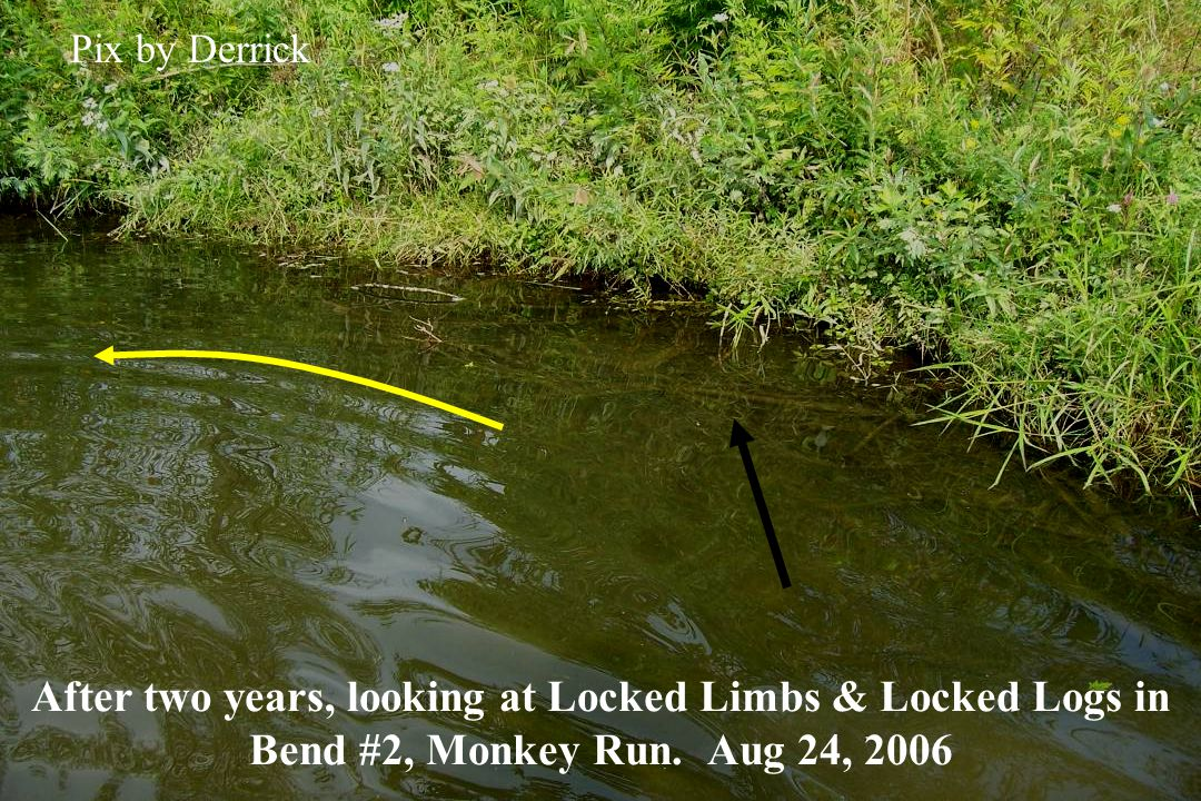 After two years, looking at Locked Limbs & Locked Logs in Bend #2, Monkey Run.