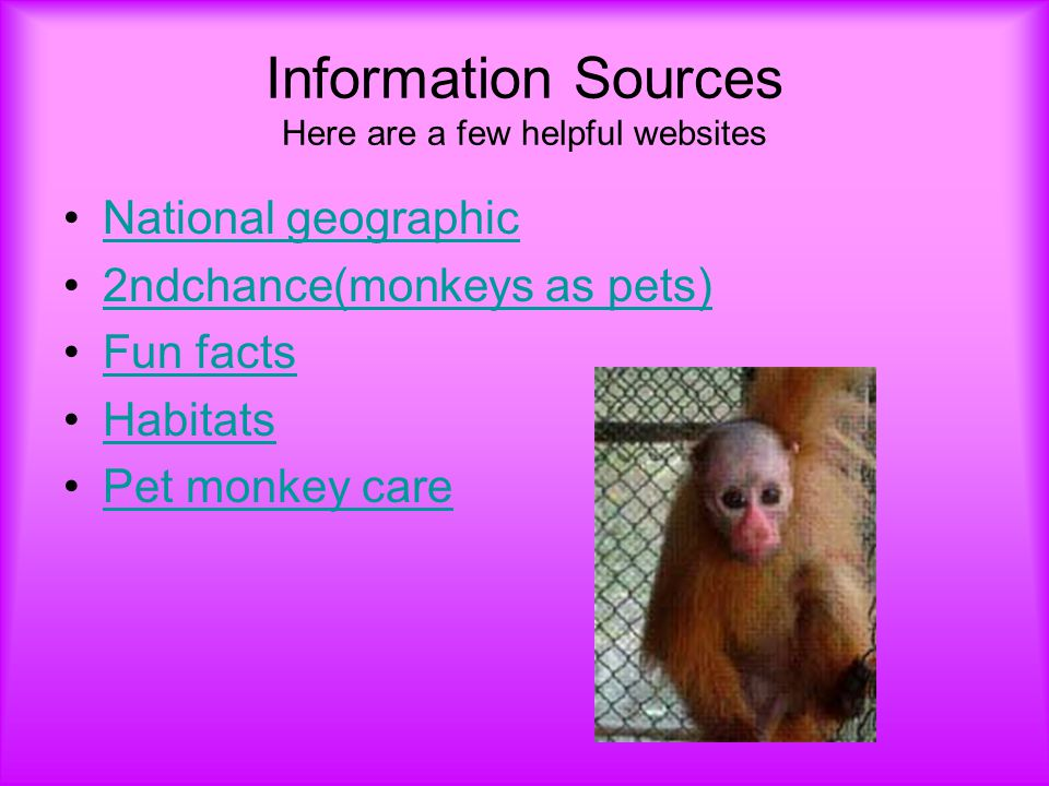 Information Sources Here are a few helpful websites National geographic 2ndchance(monkeys as pets) Fun facts Habitats Pet monkey care