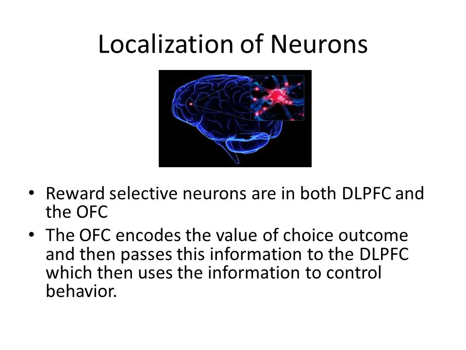 Localization of Neurons Reward selective neurons are in both DLPFC and the OFC The OFC encodes the value of choice outcome and then passes this inform