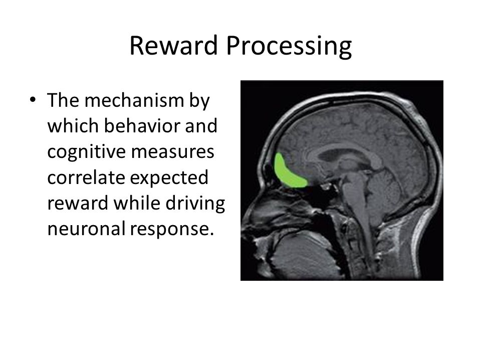 Reward Processing The mechanism by which behavior and cognitive measures correlate expected reward while driving neuronal response.