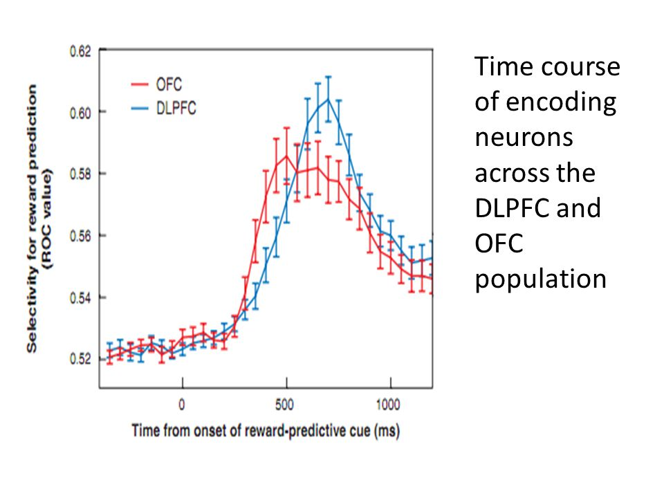Time course of encoding neurons across the DLPFC and OFC population
