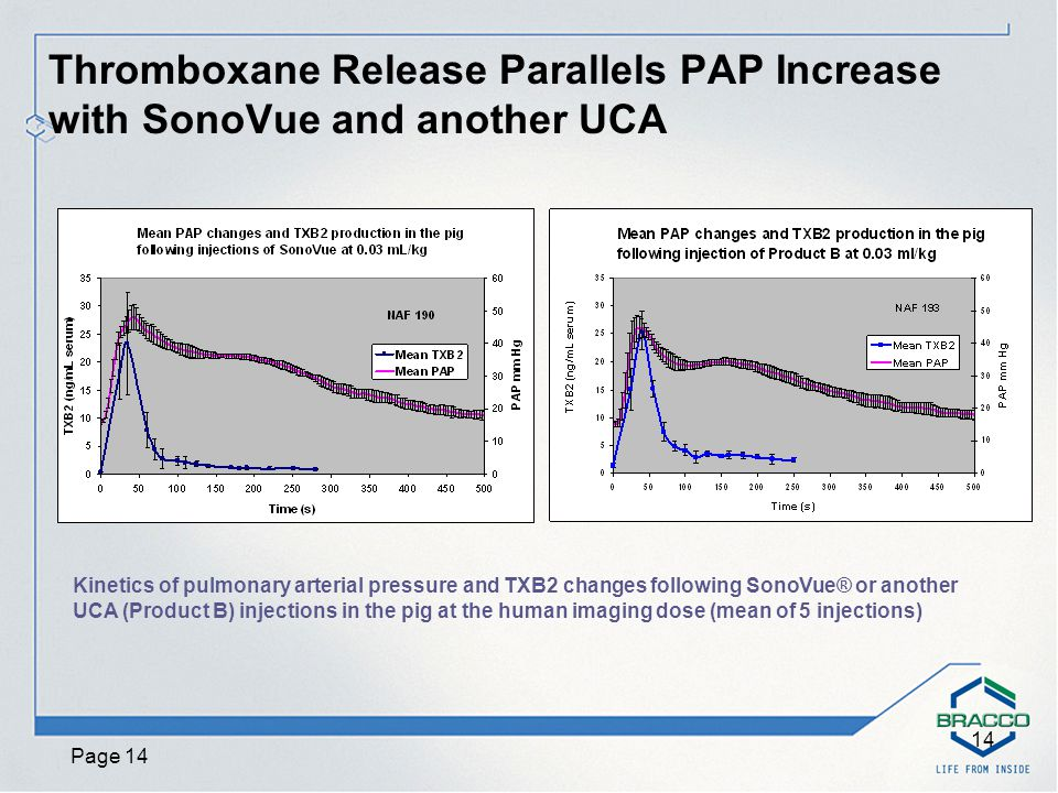 Page 14 14 Thromboxane Release Parallels PAP Increase with SonoVue and another UCA Kinetics of pulmonary arterial pressure and TXB2 changes following SonoVue® or another UCA (Product B) injections in the pig at the human imaging dose (mean of 5 injections)
