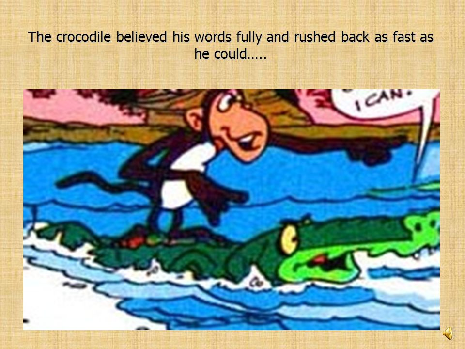 Monkey: I have placed my heart in the hollow of the tree. Crocodile: Really How was I to know