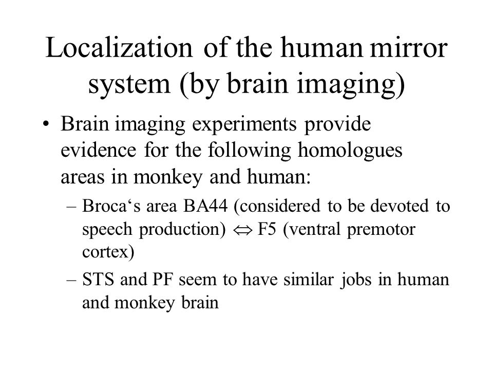 Localization of the human mirror system (by brain imaging) Brain imaging experiments provide evidence for the following homologues areas in monkey and