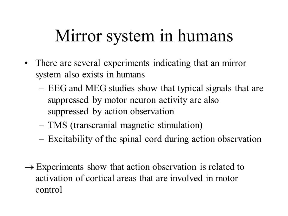 Mirror system in humans There are several experiments indicating that an mirror system also exists in humans –EEG and MEG studies show that typical si