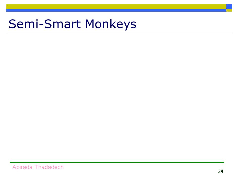 24 Apirada Thadadech Semi-Smart Monkeys