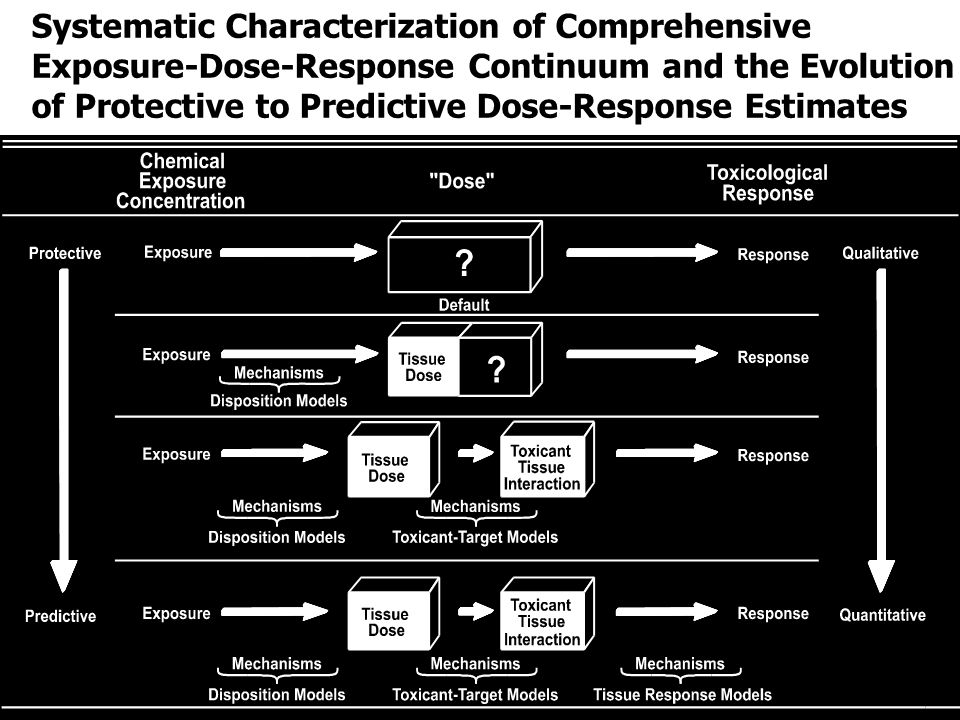Systematic Characterization of Comprehensive Exposure-Dose-Response Continuum and the Evolution of Protective to Predictive Dose-Response Estimates