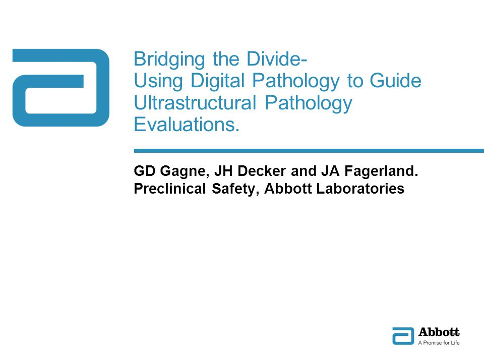 Bridging the Divide- Using Digital Pathology to Guide Ultrastructural Pathology Evaluations.