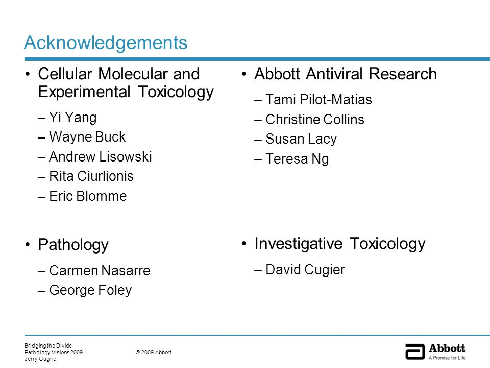 Bridging the Divide Pathology Visions 2009 Jerry Gagne © 2009 Abbott Acknowledgements Cellular Molecular and Experimental Toxicology –Yi Yang –Wayne Buck –Andrew Lisowski –Rita Ciurlionis –Eric Blomme Pathology –Carmen Nasarre –George Foley Abbott Antiviral Research –Tami Pilot-Matias –Christine Collins –Susan Lacy –Teresa Ng Investigative Toxicology –David Cugier