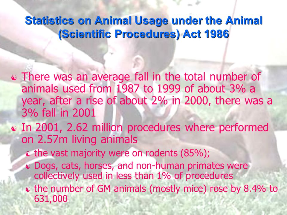 Statistics on Animal Usage under the Animal (Scientific Procedures) Act 1986  There was an average fall in the total number of animals used from 1987