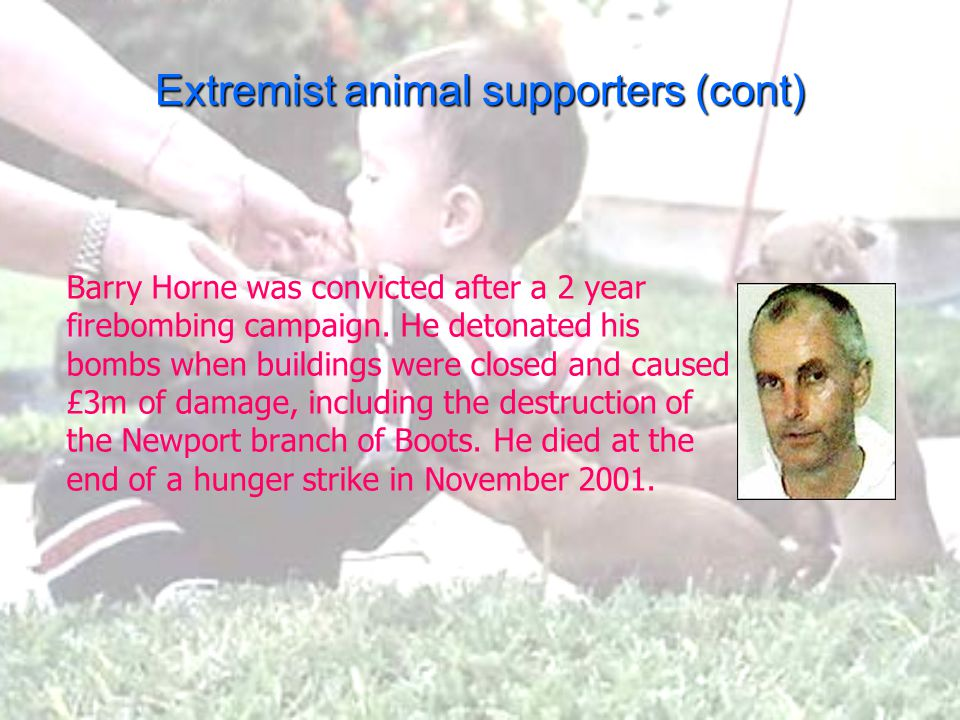 Extremist animal supporters (cont) Barry Horne was convicted after a 2 year firebombing campaign. He detonated his bombs when buildings were closed an
