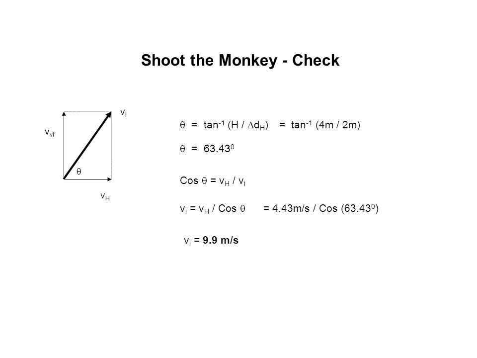 Shoot the Monkey - Check vivi  vHvH v vi  = tan -1 (H /  d H ) = tan -1 (4m / 2m)  = 63.43 0 Cos  = v H / v i v i = v H / Cos  = 4.43m/s / Cos (