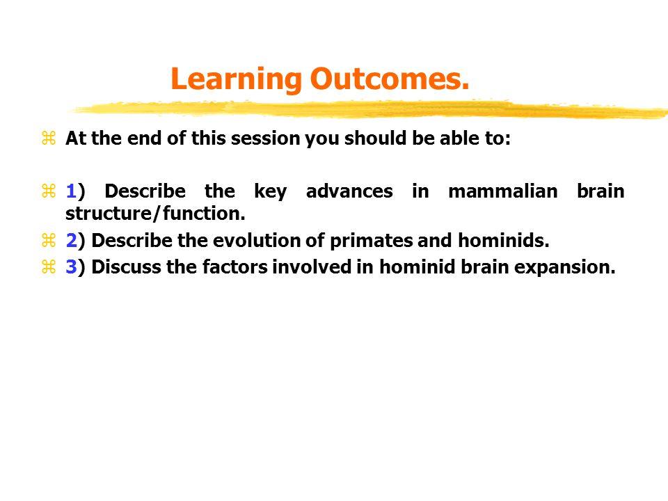 Key Events in Evolution.z10-16bya - formation of universe.