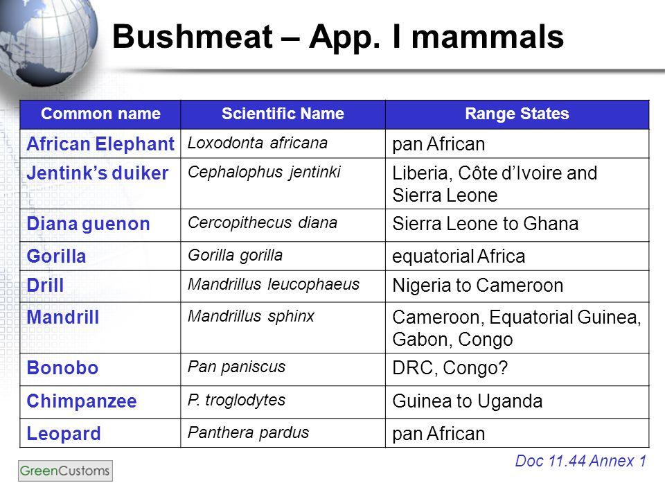 Bushmeat – App.