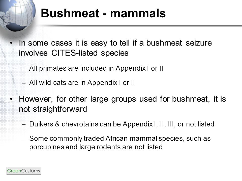 Bushmeat - mammals In some cases it is easy to tell if a bushmeat seizure involves CITES-listed species –All primates are included in Appendix I or II –All wild cats are in Appendix I or II However, for other large groups used for bushmeat, it is not straightforward –Duikers & chevrotains can be Appendix I, II, III, or not listed –Some commonly traded African mammal species, such as porcupines and large rodents are not listed