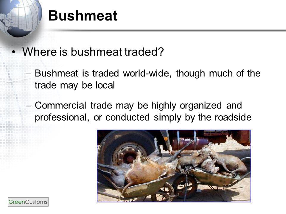 Bushmeat – App. II mammals De Brazza's monkey (Cephalophus neglectus) Photo credit: Aaron Logan