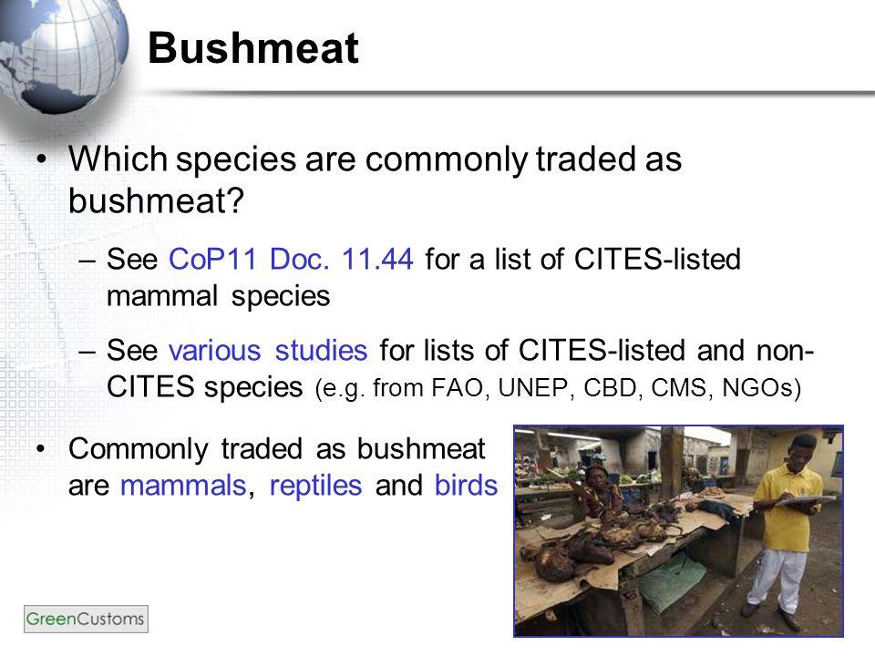 Bushmeat – App. III mammals African civet (Civettictis civetta)