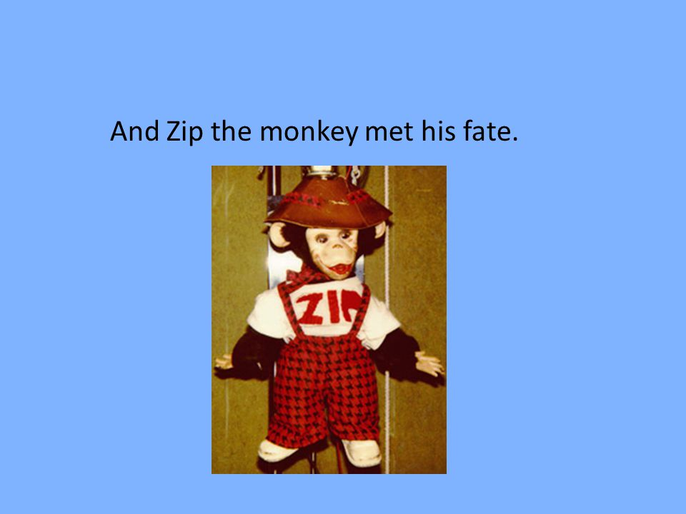 And Zip the monkey met his fate.