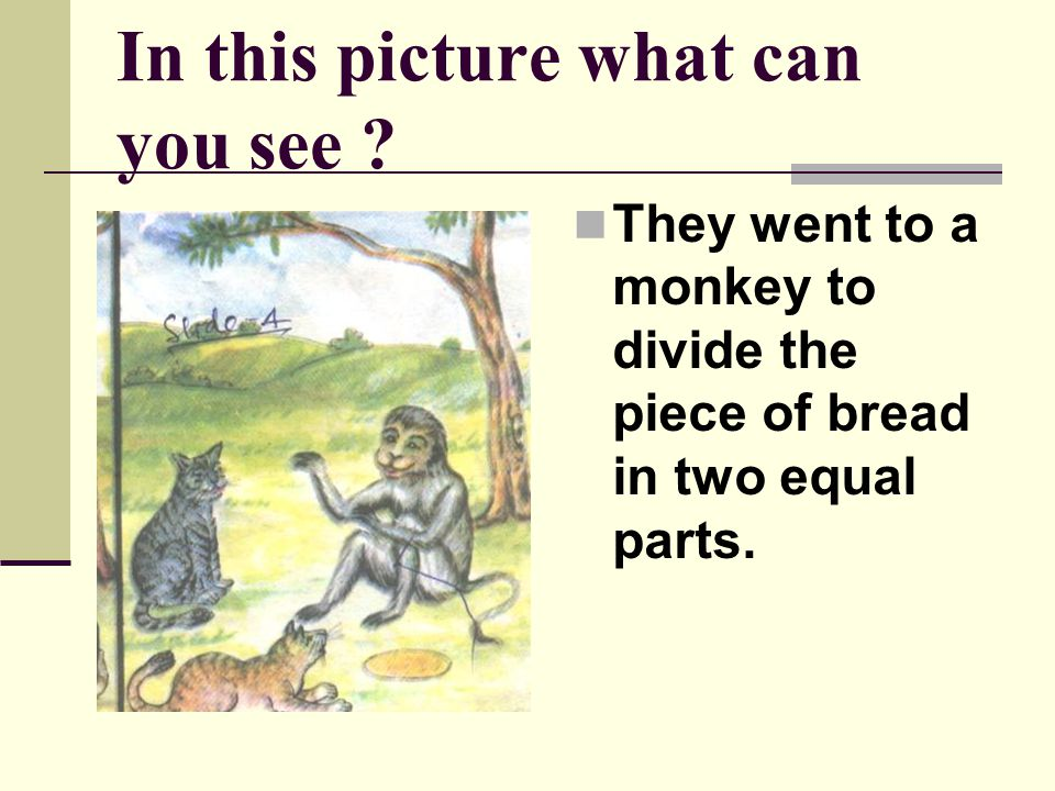 In this picture what is Monkey doing .The monkey cut the piece of bread into two.
