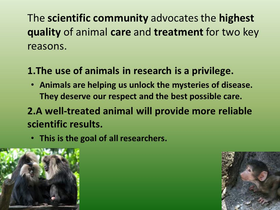The scientific community advocates the highest quality of animal care and treatment for two key reasons.