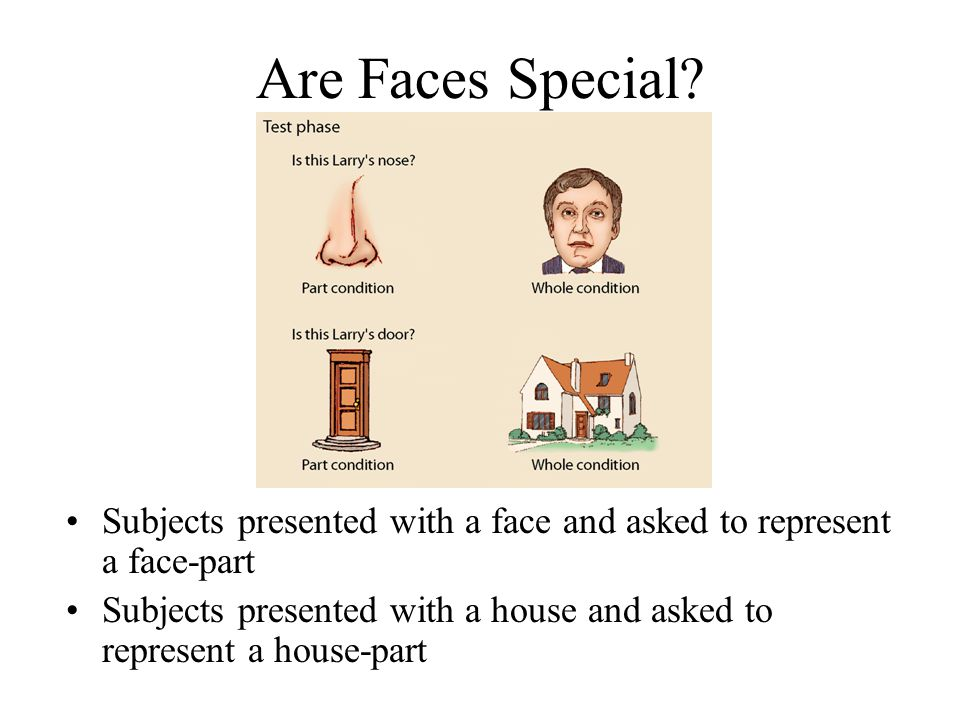 Are Faces Special? Subjects presented with a face and asked to represent a face-part Subjects presented with a house and asked to represent a house-pa