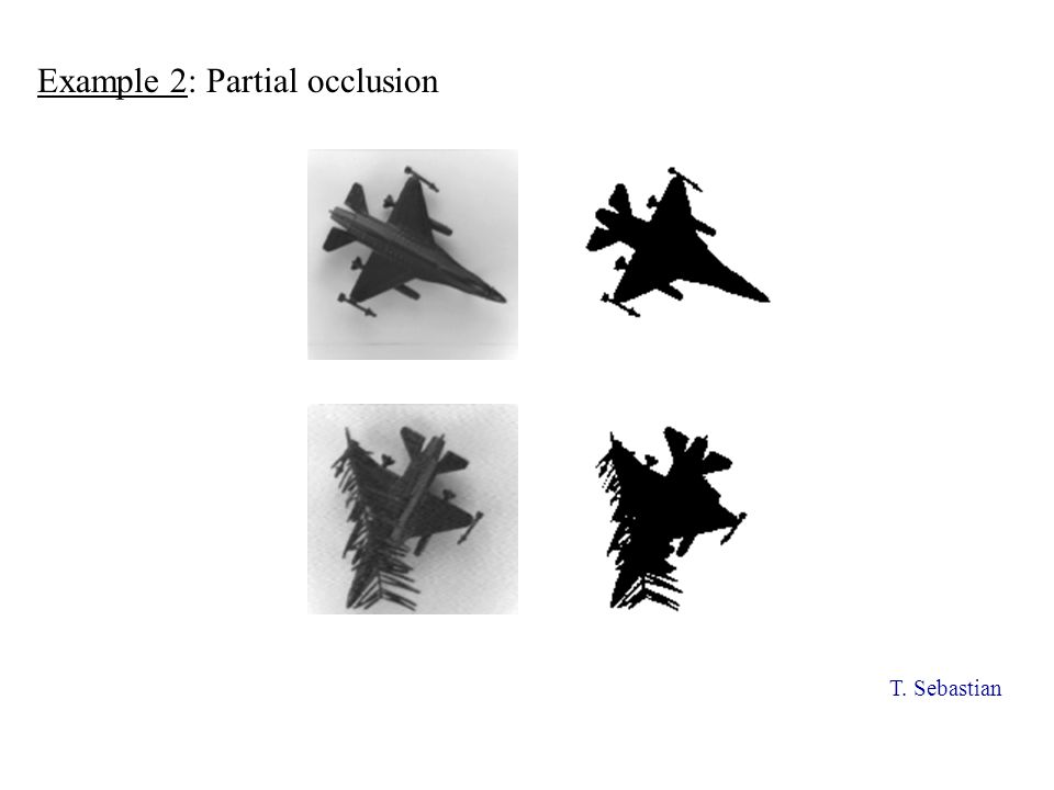 Example 2: Partial occlusion T. Sebastian