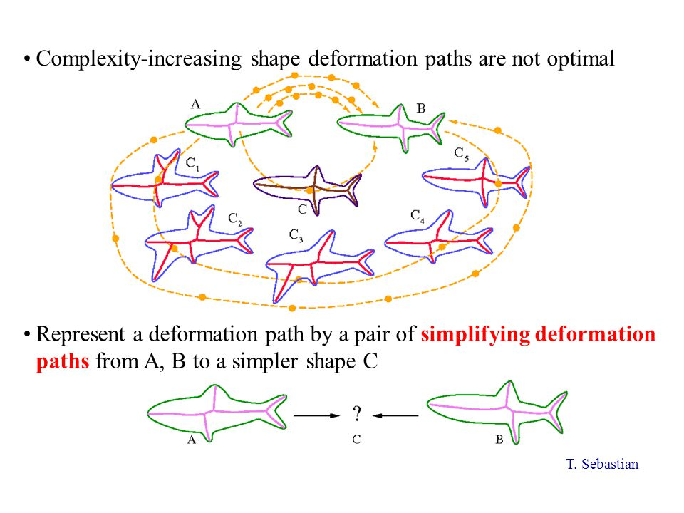 Complexity-increasing shape deformation paths are not optimal Represent a deformation path by a pair of simplifying deformation paths from A, B to a simpler shape C T.