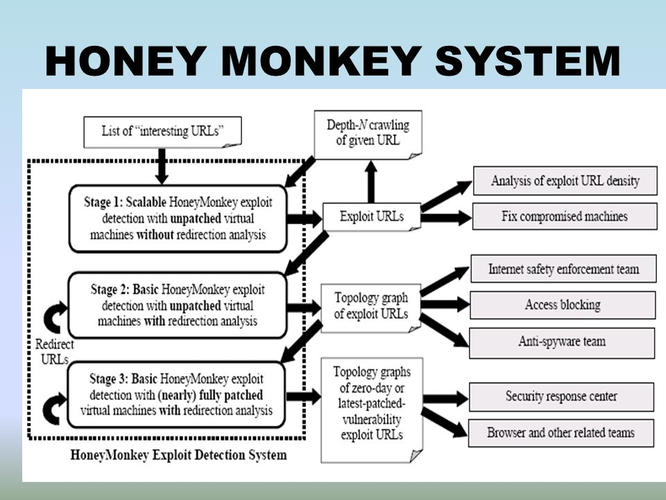 HONEY MONKEY SYSTEM