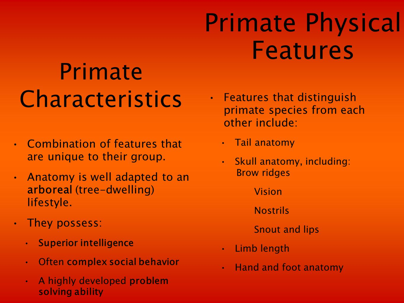 Primate Characteristics Combination of features that are unique to their group.